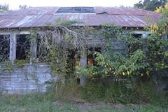 032 Abandoned School