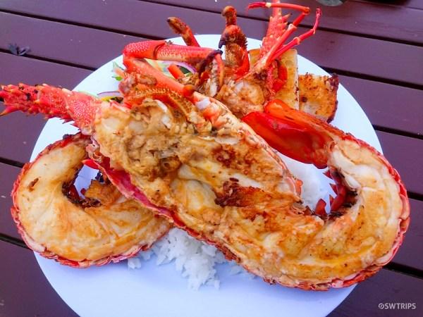 Crayfish, Kaikoura Seafood BBQ