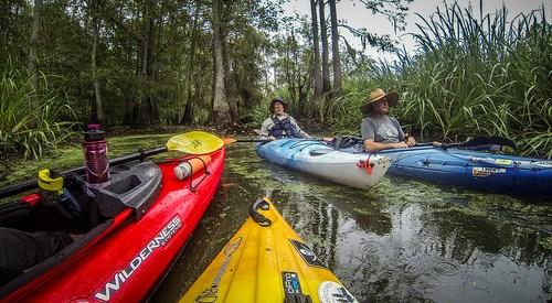 Sparkleberry Swamp with LCU-237