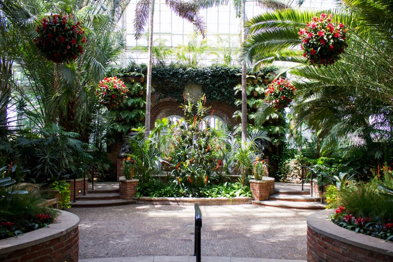 Phipps Conservatory Pittsburgh-002