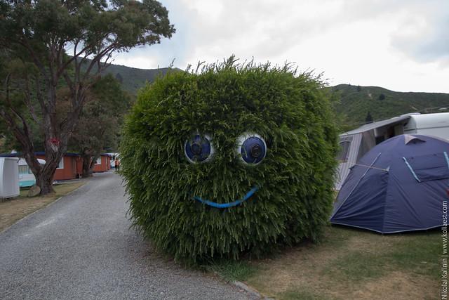NZ_day10-33