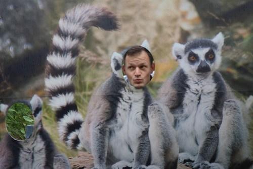 01 Sydney & Jervis Bay-26 Taronga Zoo