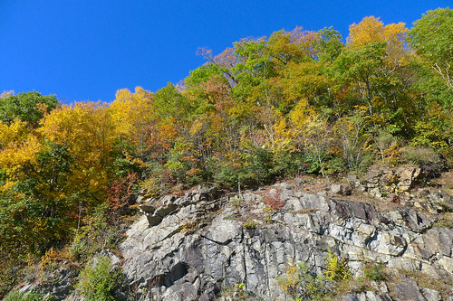 Blue Ridge Parkway in Autumn-4