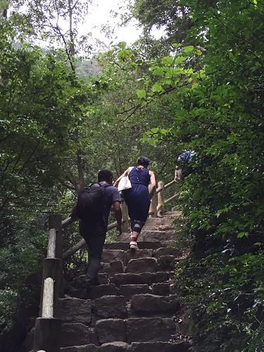 山登り〜〜