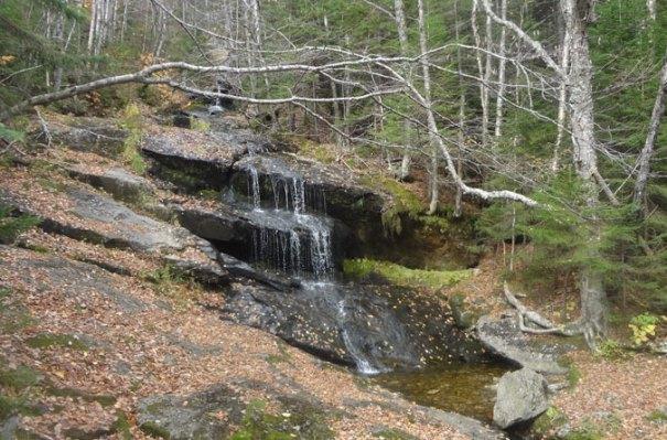 Old Speck Brook