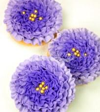 PurpleOmberfrills