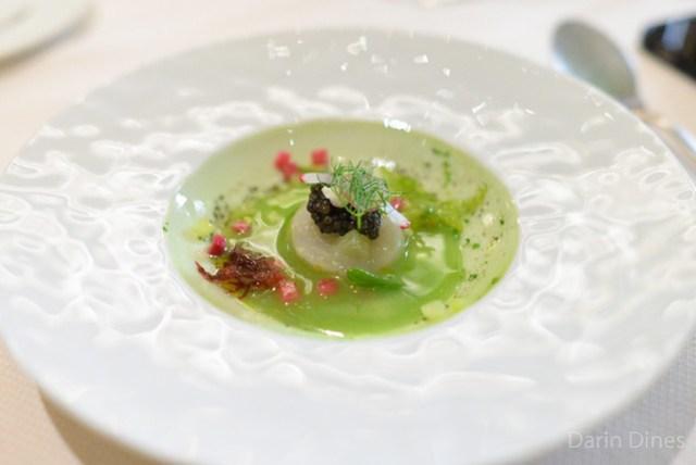SAINT JACQUES Sea Scallops Ceviche, Persian Cucumber, Radishes, Sea Lettuce, Finger Lime, White Sturgeon Caviar