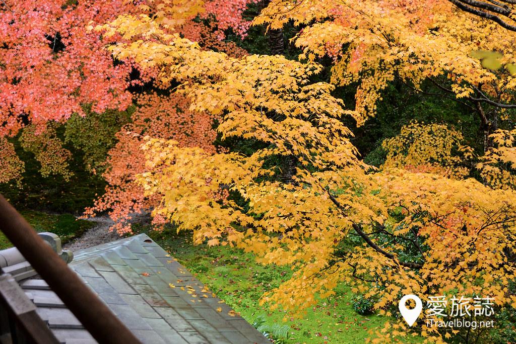 京都赏枫景点 琉璃光院 23