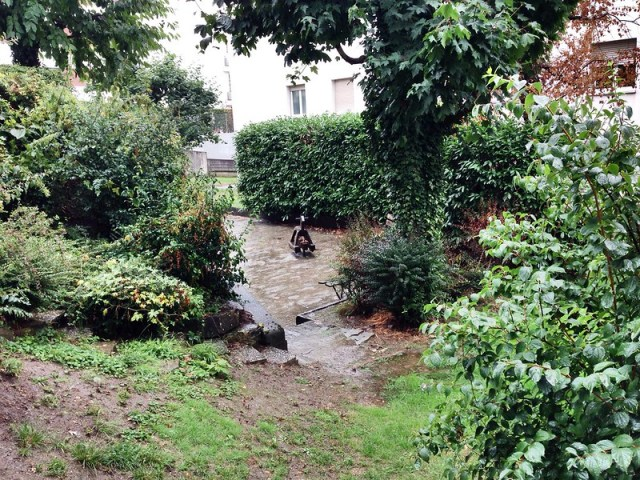 Swiss Monsoon