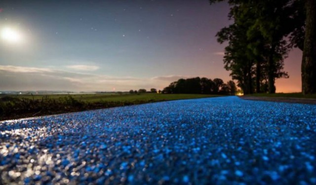 Close Up Shot in  Poland's Glow In The Dark Bike Path