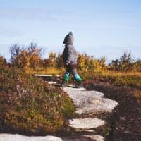 Høstfarger, fjell og en tanteungerygg