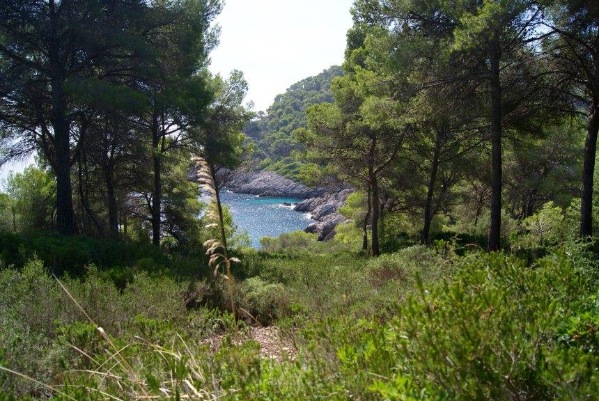 Excursión Caló des Contrabán ( Capdepera)