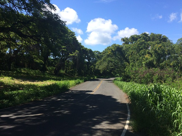Picture from Tantalus Drive, Oahu