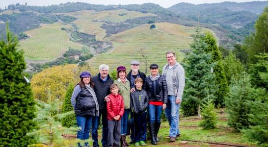 Christmas Tree Farm-3
