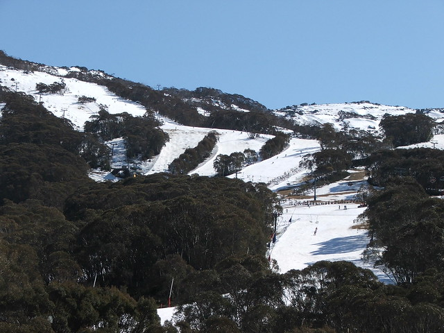Picture from Thredbo Ski Resort