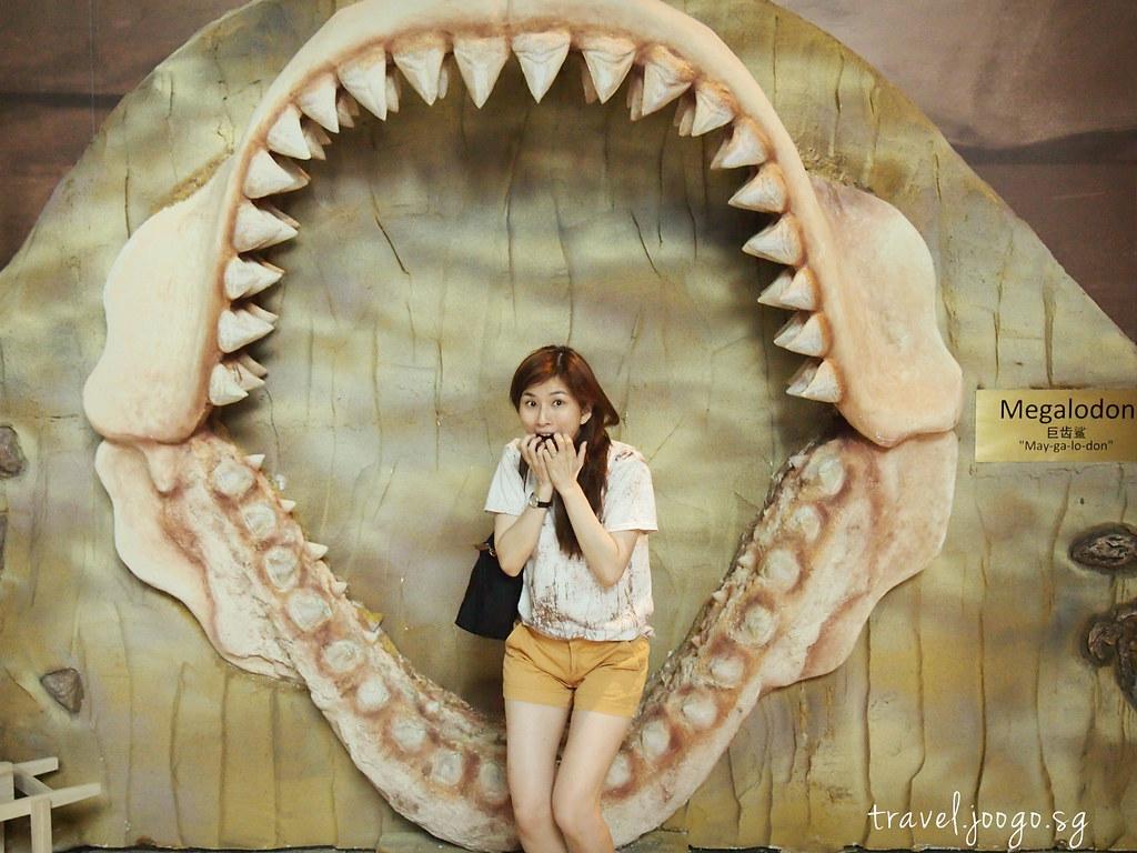 travel.joogo.sg - SEA Aquarium 20