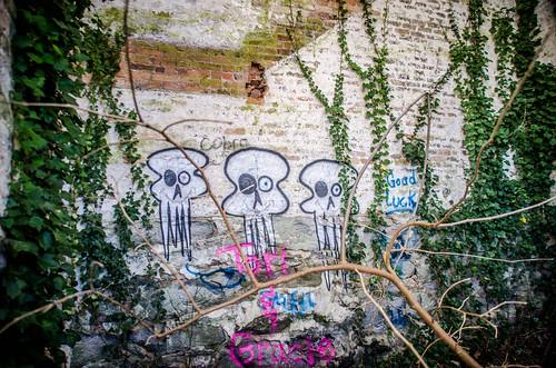 Glendale Mill Ruins-013
