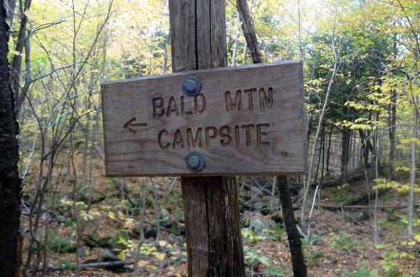 Bald Mountain Campsite