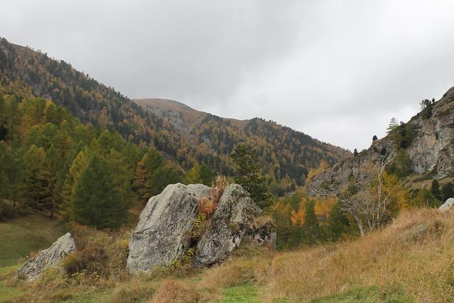 furi to zermatt trail greenery