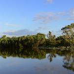 02 Viajefilos en Australia, Kakadu NP 083