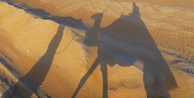arabian nights village camel ride shadow