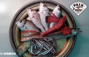 Peix de custodia