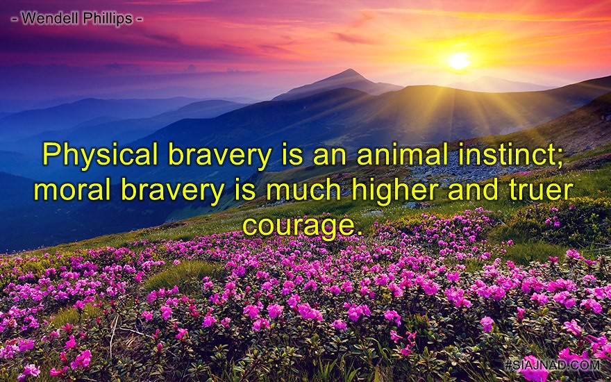 Physical bravery is an animal instinct moral bravery is much higher and truer