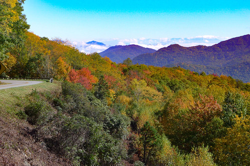 Blue Ridge Parkway in Autumn-12
