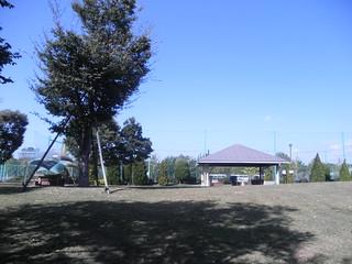 PA080359