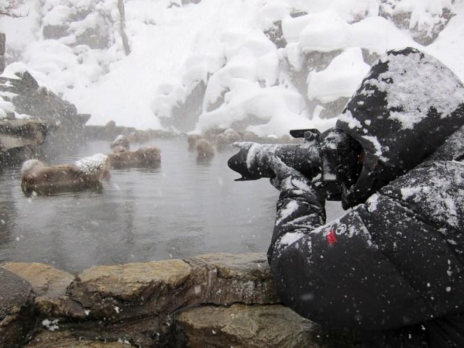 Zonnekap-sneeuw-1