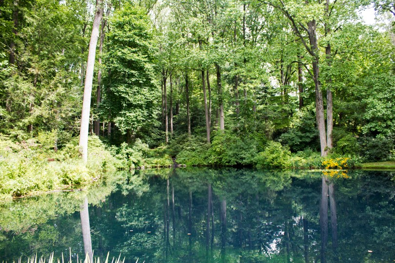 mt-cuba-gardens-delaware-reflecting-pond-trees