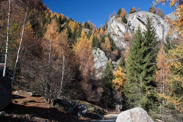 In Val Grande di Lanzo