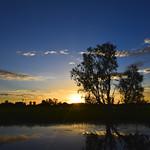 02 Viajefilos en Australia, Kakadu NP 104