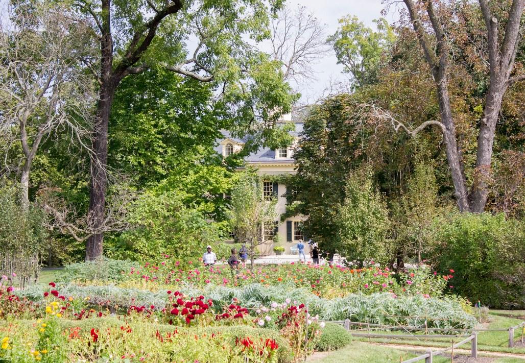 hagley-garden-food-tour-garden-house-view