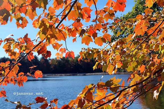 Hello fall 2015! What plans do we have?