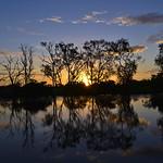 02 Viajefilos en Australia, Kakadu NP 115