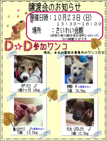 201601023_satooyakai_dd