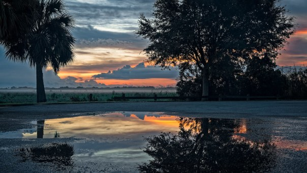 Puddles at dawn