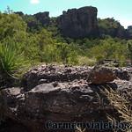 02 Viajefilos en Australia, Kakadu NP 039