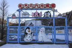 市立室蘭水族館, 室蘭, 北海道, 日本, Muroran Public Aquarium, Muroran, Hokkaido, Japan, しりつむろらんすいぞくかん, むろらんし, ほっかいどう, にっぽん, にほん