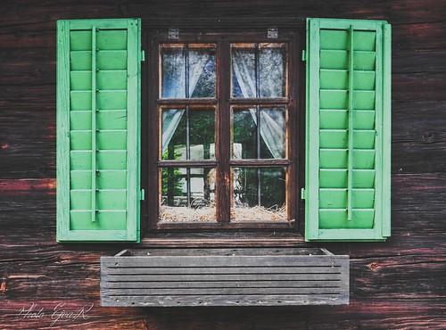 Leaving Window / Elhagyva Ablak