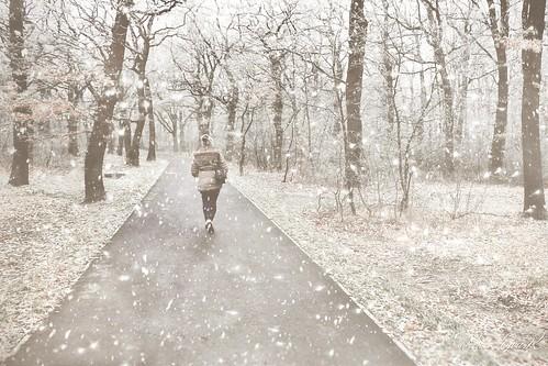 Snowfall/Havazás