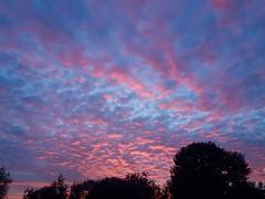 Sky, evening
