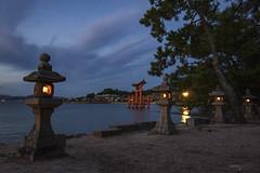 Stone Lanterns, Itsukushima Shrine - Miyajima Island (Japan)