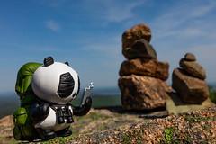 Hiking Panda