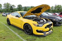 American Muscle Mustang Show 2019_140