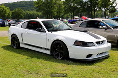 American Muscle Mustang Show 2019_166