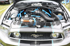 American Muscle Mustang Show 2019_152