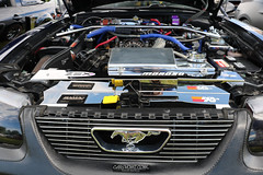 American Muscle Mustang Show 2019_010