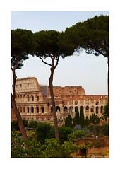 Colosseo (IMG_8381_F)